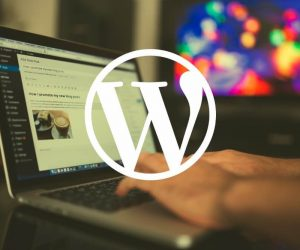 WprdPress